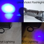 Urine spotting flashlight