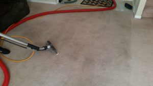 Carpet Cleaning Clear Lake Shores