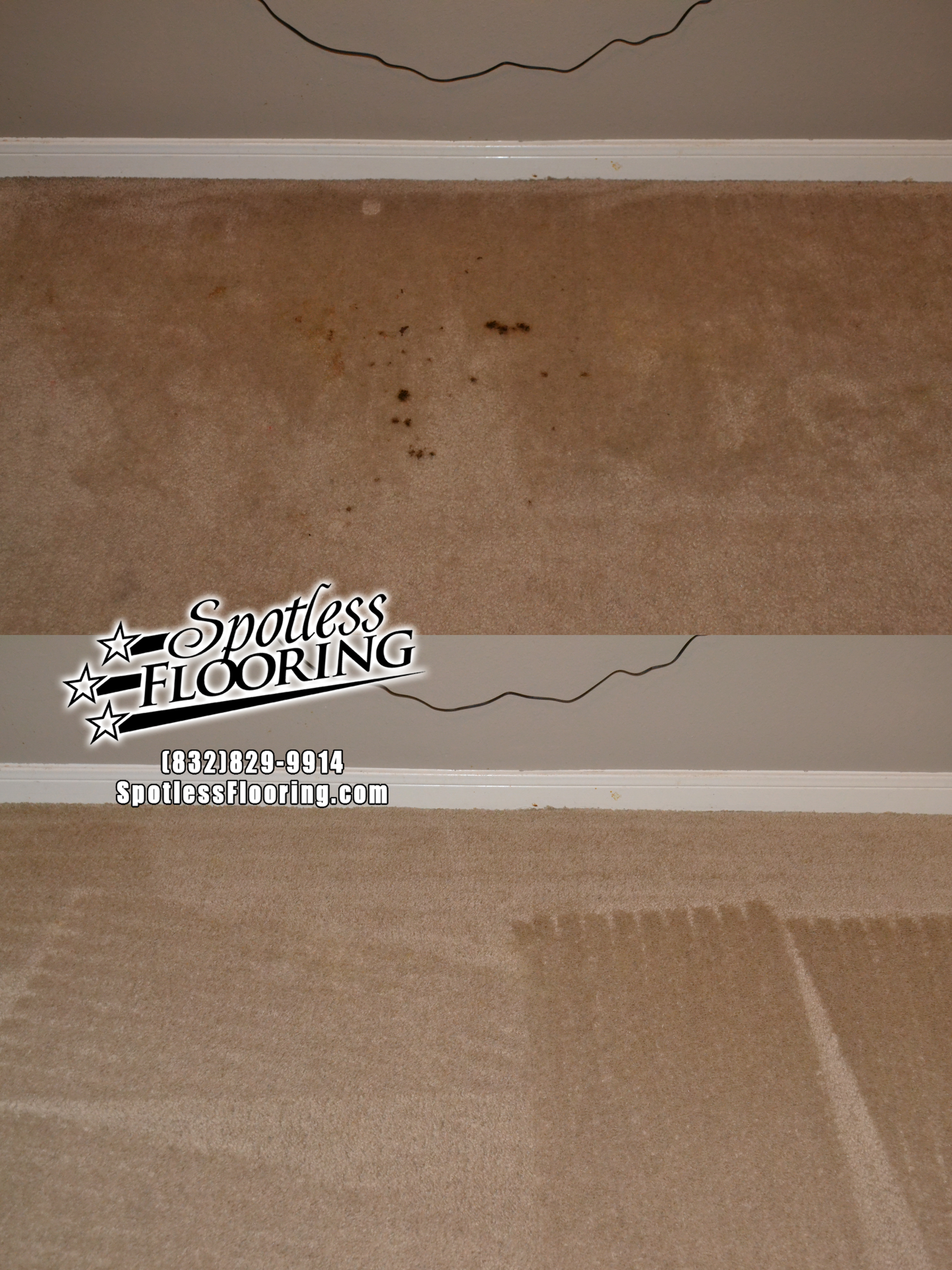 Carpet Cleaning 8