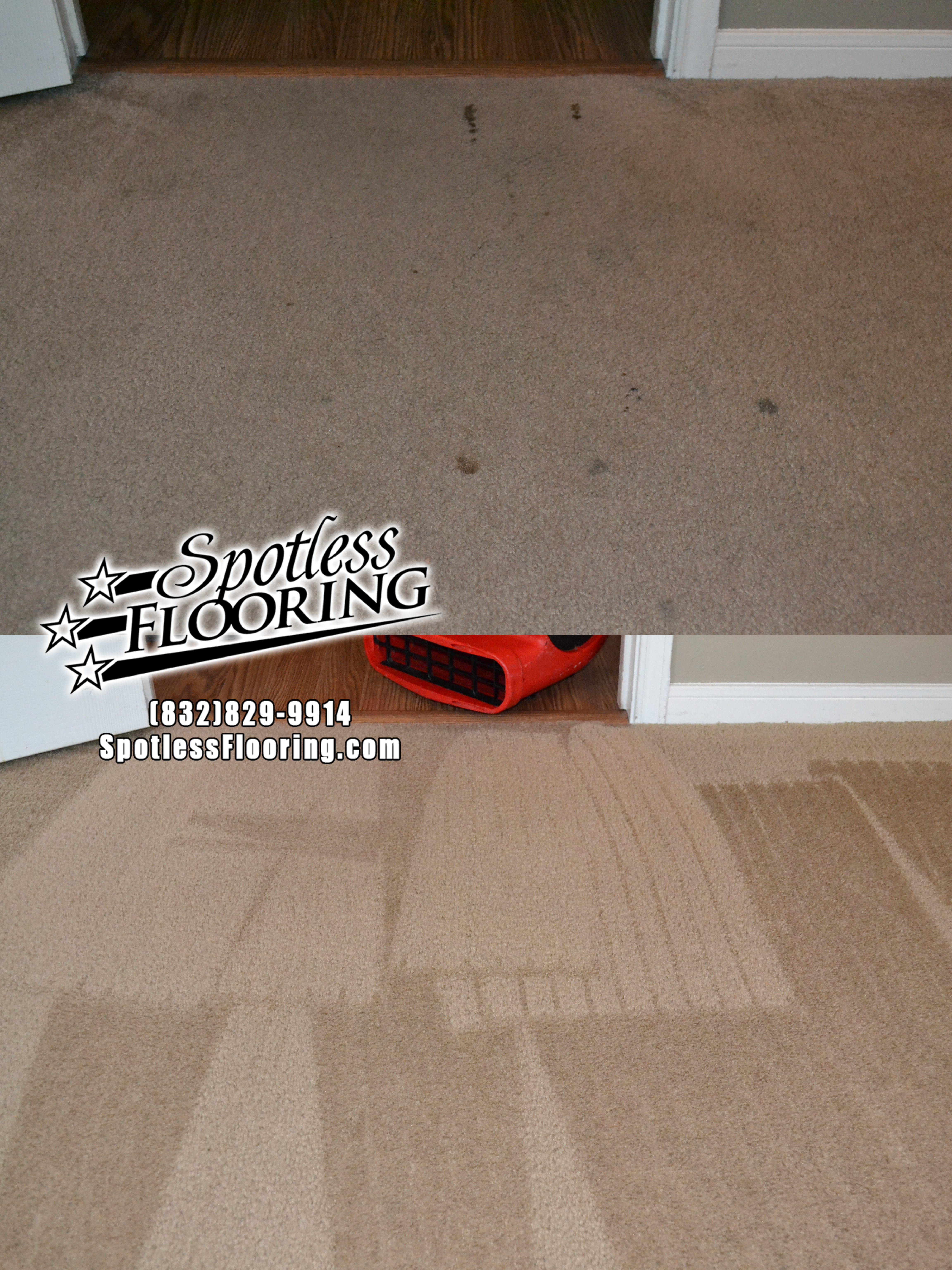 Carpet Cleaning 9