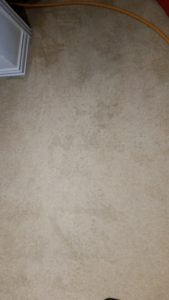 carpet cleaning problems